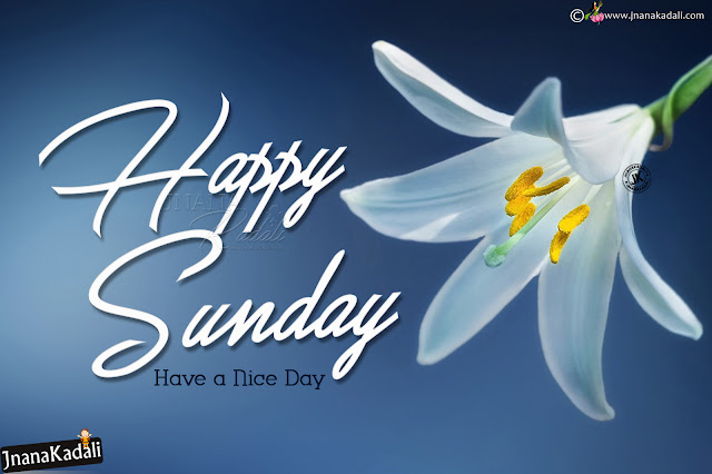 best english happy sunday greetings, online happy sunday quotes hd wallpapers, happy sunday joyful greetings in english