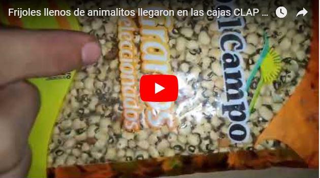 Frijoles llenos de animalitos llegaron en las cajas CLAP a Maracaibo