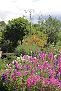 A colourful part of the nursery