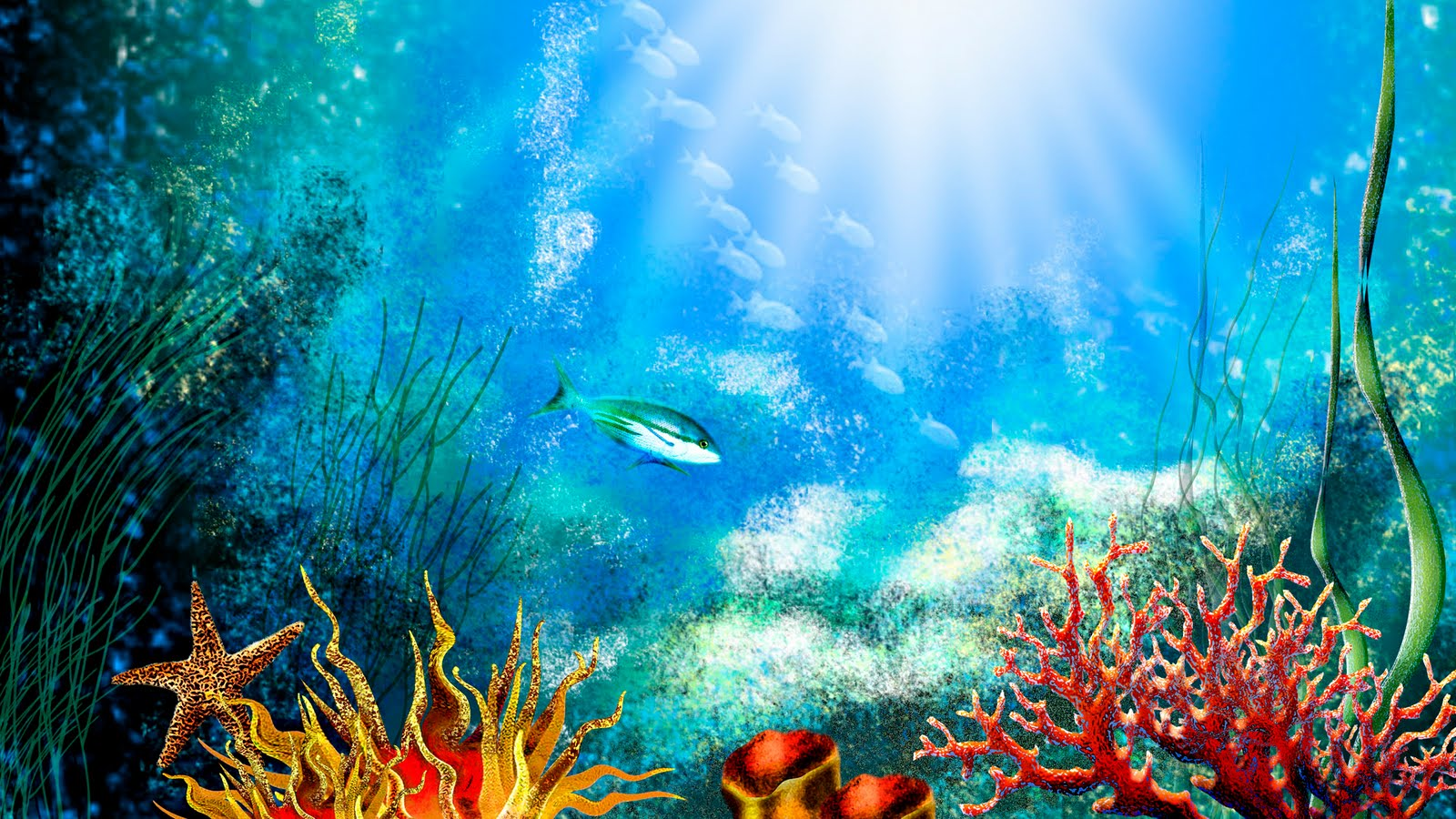 Free 3d Wallpapers Download Aquarium Hd Wallpaper