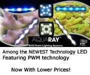 Aquaray Lighting