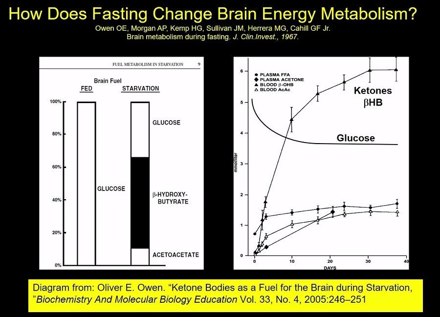 dieta cetosis que causa mareo extremo y sensación de nerviosismo