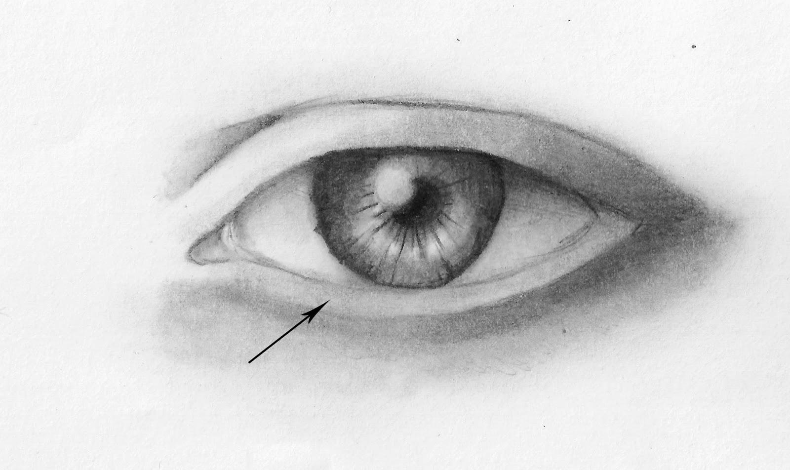 Come disegnare un occhio for Foto facili da disegnare