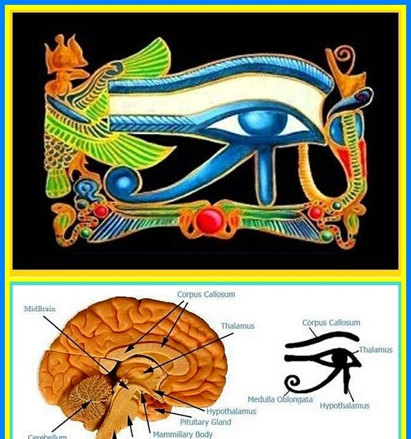 How To Raise Your Vibration The Eye Of Horus Ra