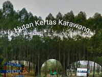 Hutan Kertas Wisata Alam Nan Eksotik di Karawang