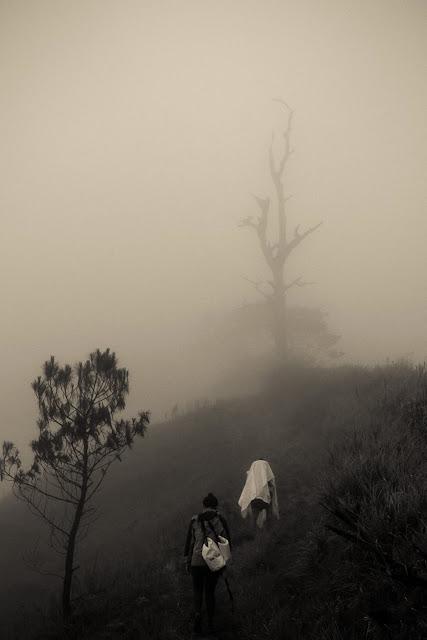 Trekking with Fog