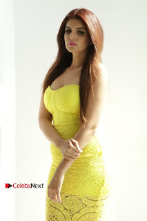 Actress Model Ihana Dhillon Poshoot Gallery in Yellow Lace Short Dress  0006.jpg