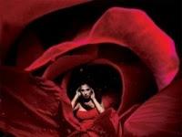 Resenha Beleza Cruel - Rosamund Hodge