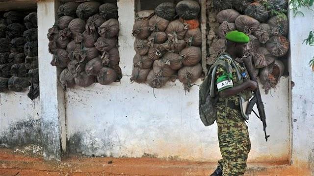 Al-Shabab Takfiri group 'seizes town in Somalia'