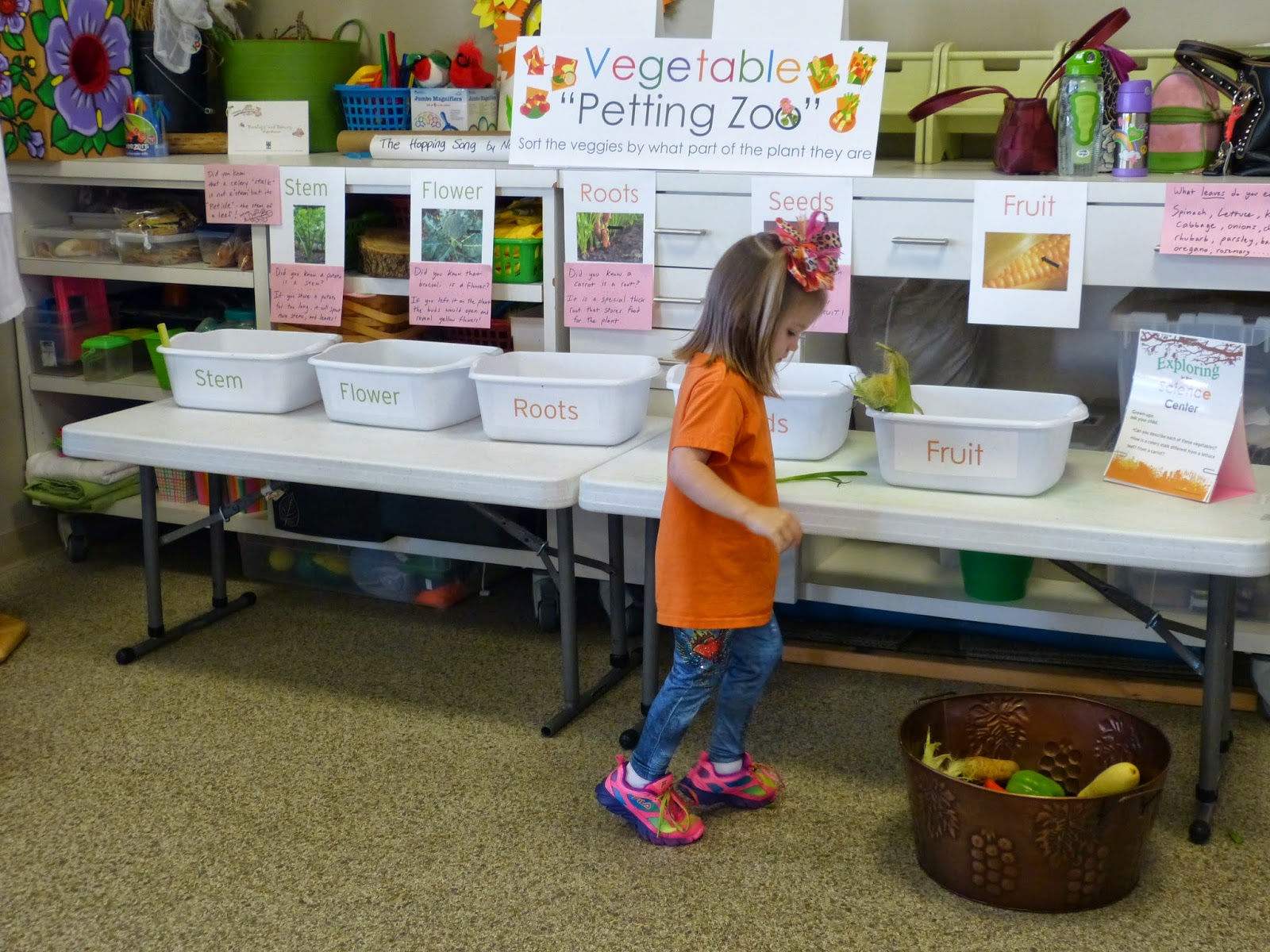 Follow up ideas for the Lois Ehlert book: Growing Vegetable Soup