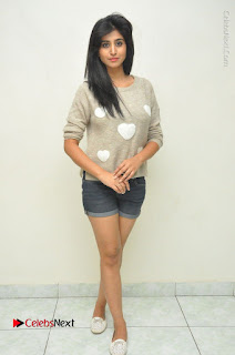 Actress Model Shamili (Varshini Sounderajan) Stills in Denim Shorts at Swachh Hyderabad Cricket Press Meet  0039.JPG