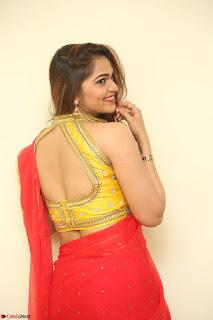 Actress Ashwini in Golden choli Red saree Spicy Pics ~  086.JPG