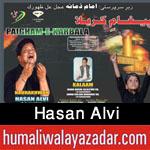 http://www.humaliwalayazadar.com/2016/09/hasan-alvi-nohay-2017.html