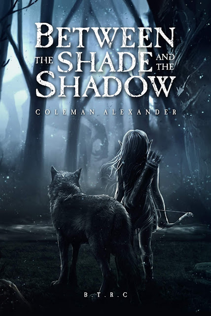 between-the-shade-and-the-shadow, coleman-alexander, book