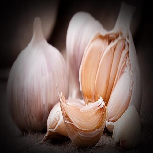 Manfaat Dan Khasiat Bawang Putih Untuk Kesehatan
