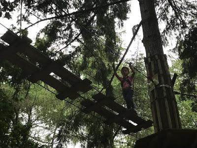 Child at Go Ape Junior, Tilgate Park, Crawley