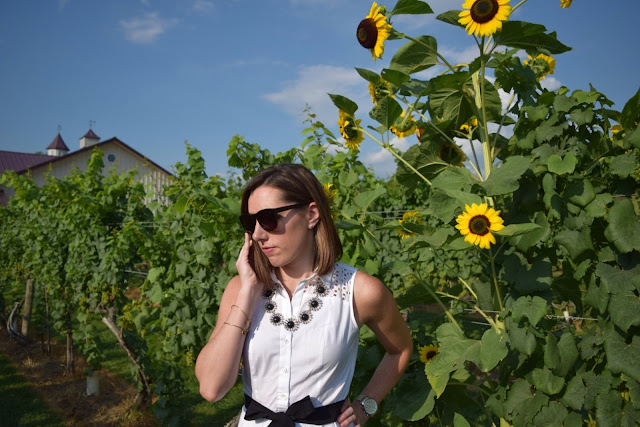 blogger in sunflowers