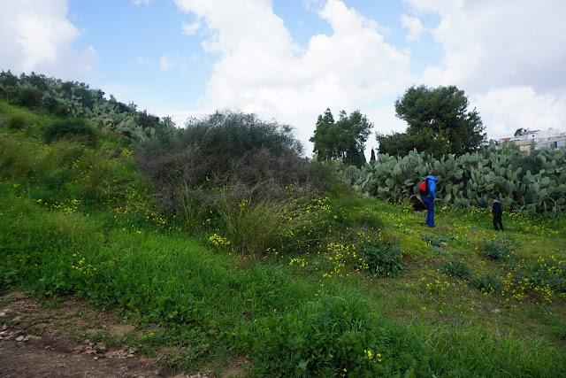 גבעת נפוליאון ברמת גן