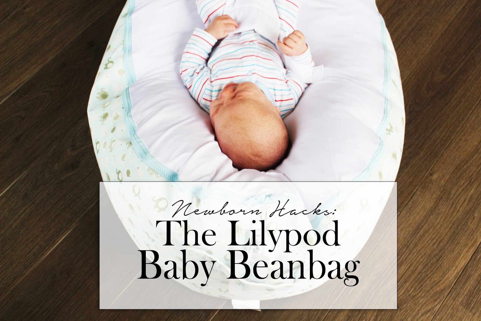 Lilypod Baby Bean Bag Colic Babies Relief Apples and Pips