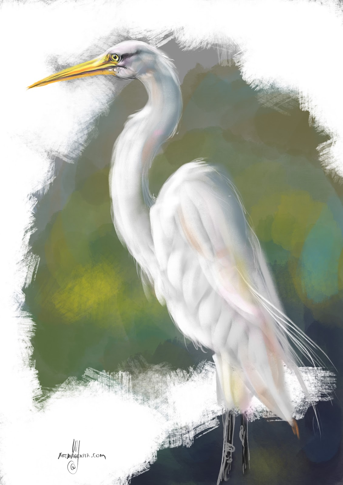 Birds herons for White heron paint