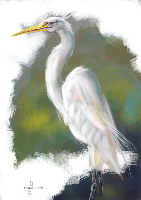 Great egret Bird painting by Artmagenta
