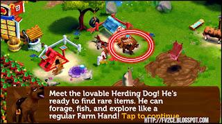 FV2CE, Farm Dogs, Herding Dogs