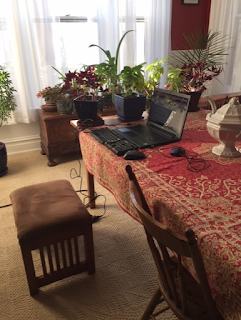 Dining room table with red patterned tablecloth and laptop computer