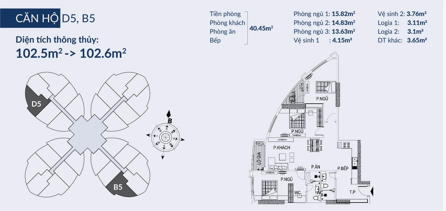 Chi tiết căn hộ D5, B5 dự án Sky View Plaza