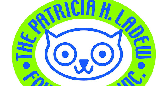 A Haven for Cats on Long Island - The Patricia H. Ladew Foundation