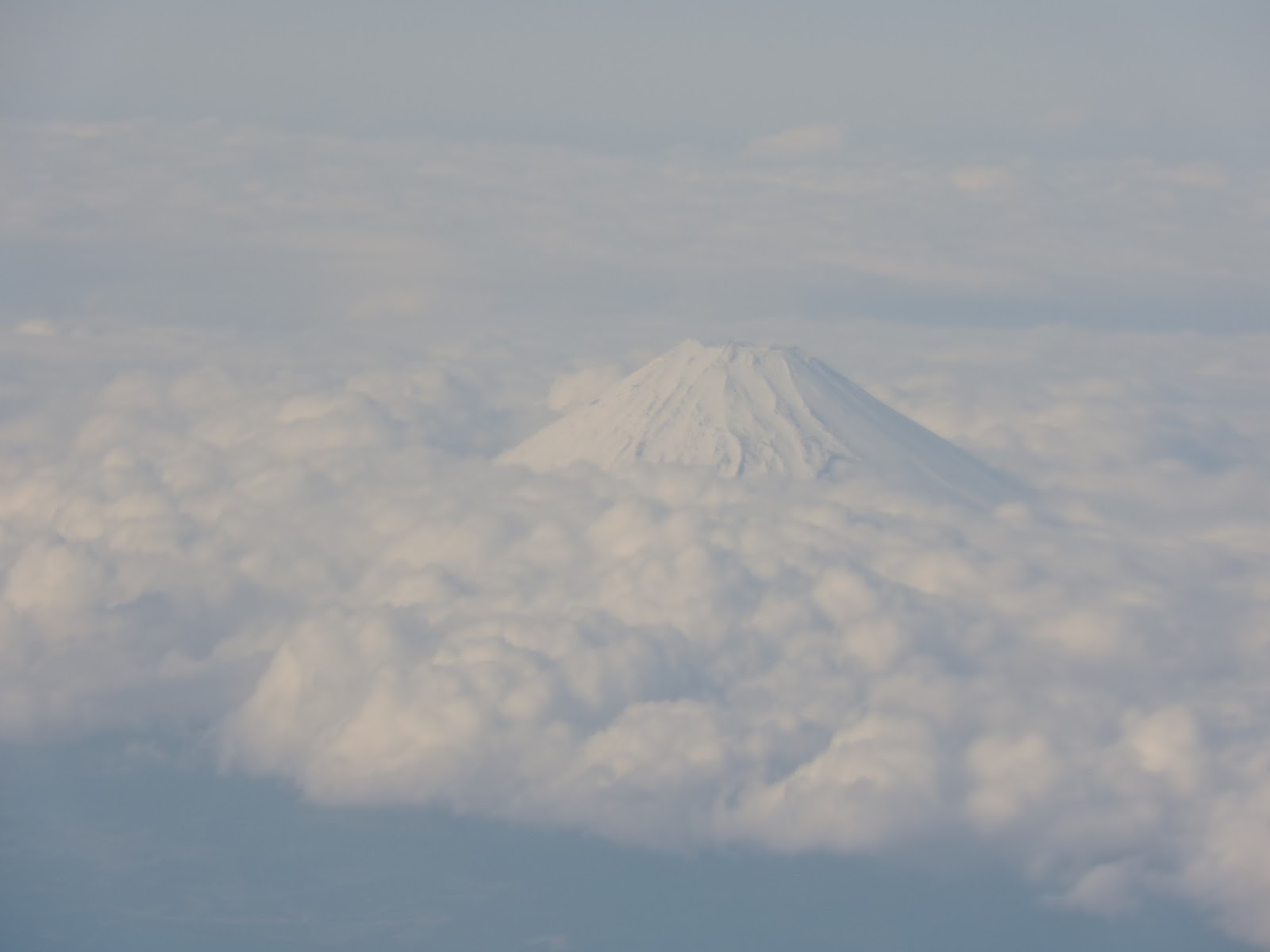 Peachy Rays Rabbit Hutch 2 I See Mt Fuji Through An Airplane Window Gmtry Best Dining Table And Chair Ideas Images Gmtryco