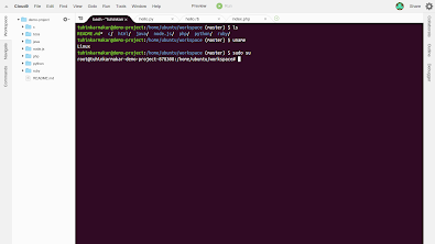 Screenshot of Cloud9's terminal