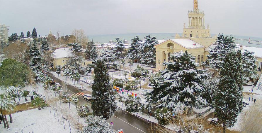 Краснодарский край Пальмы Сочи укрыло снегом