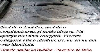 Urmele paşilor lui Buddha - Povestire de Osho