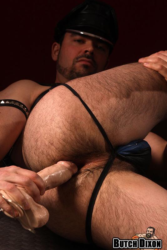 gay max holden clips websites