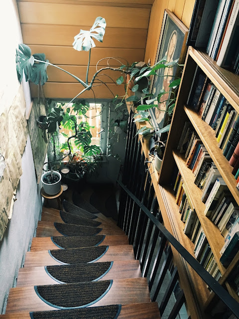 A Certain Vibe: Big plants and Natural Staircases