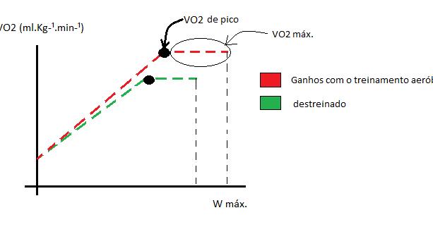 zona de ardere a grăsimilor vo2 max