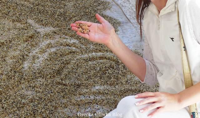 kuleczki żywicy mastichowej w dłoniach