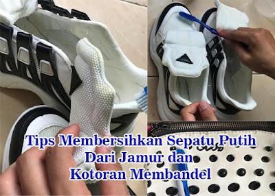 Tips Membersihkan Sepatu Putih Dari Jamur dan Kotoran Membandel