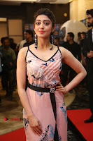 Actress Pranitha Subhash Pos in Short Dress at SIIMA Short Film Awards 2017 .COM 0139.JPG