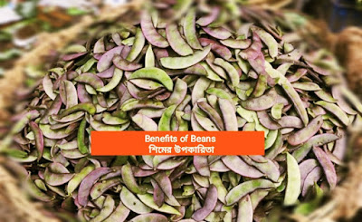 benefits of beans, benefits of green beans, list of healthy beans, beans types, legumes vs beans, benefits of eating beans and rice together, is eating too much beans bad for you, list of beans, kidney beans,