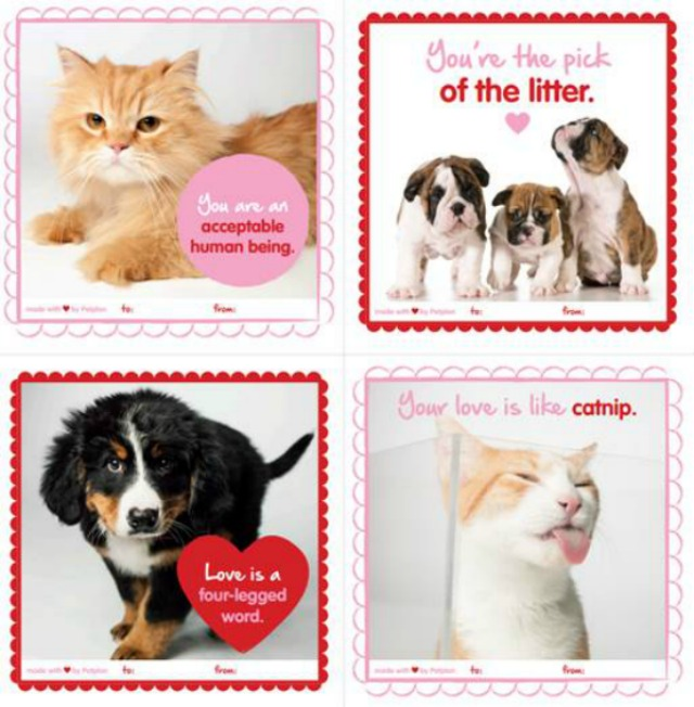 Pet Themed Valentine's Day Cards by #Petplan