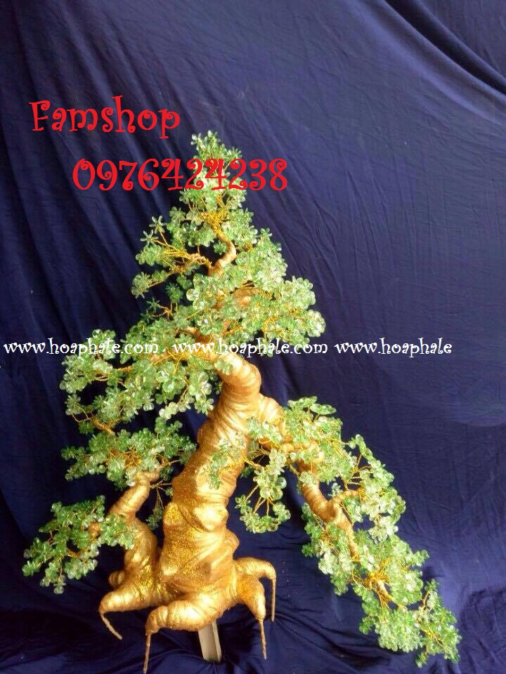 Goc bonsai cay hoa su tai Le Van Luong