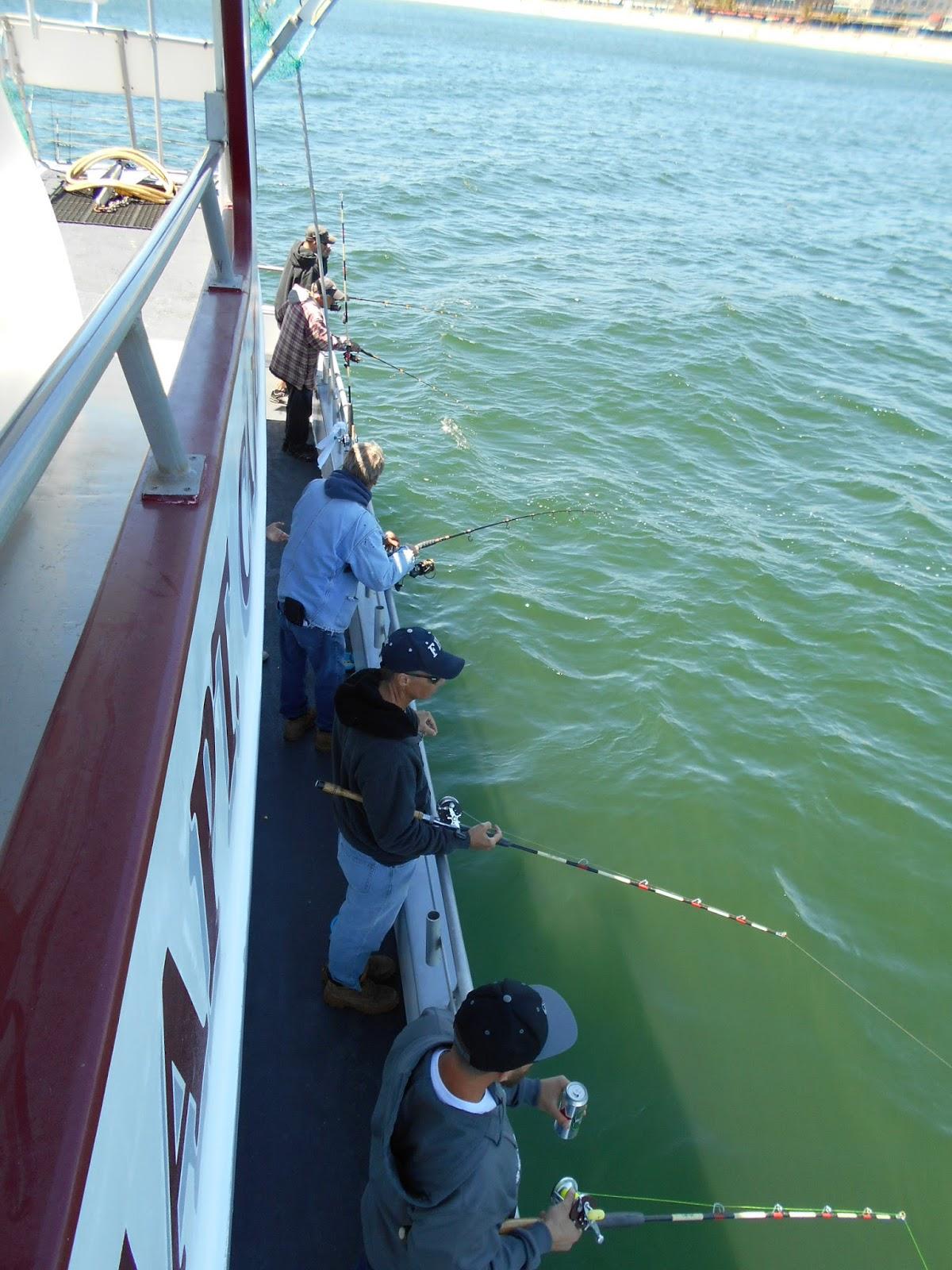 Nj salt fish 2016 06 12 captain cal belmar for Belmar nj fishing report