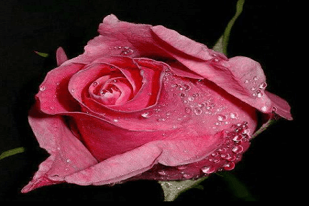 Kumpulan puisi pendek cinta yang sangat romantis dan mendalam