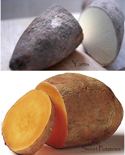 What is the Difference Between Sweet Potatoes and Yams