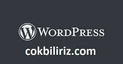 WordPress Blogları İçin Temel Eklentiler