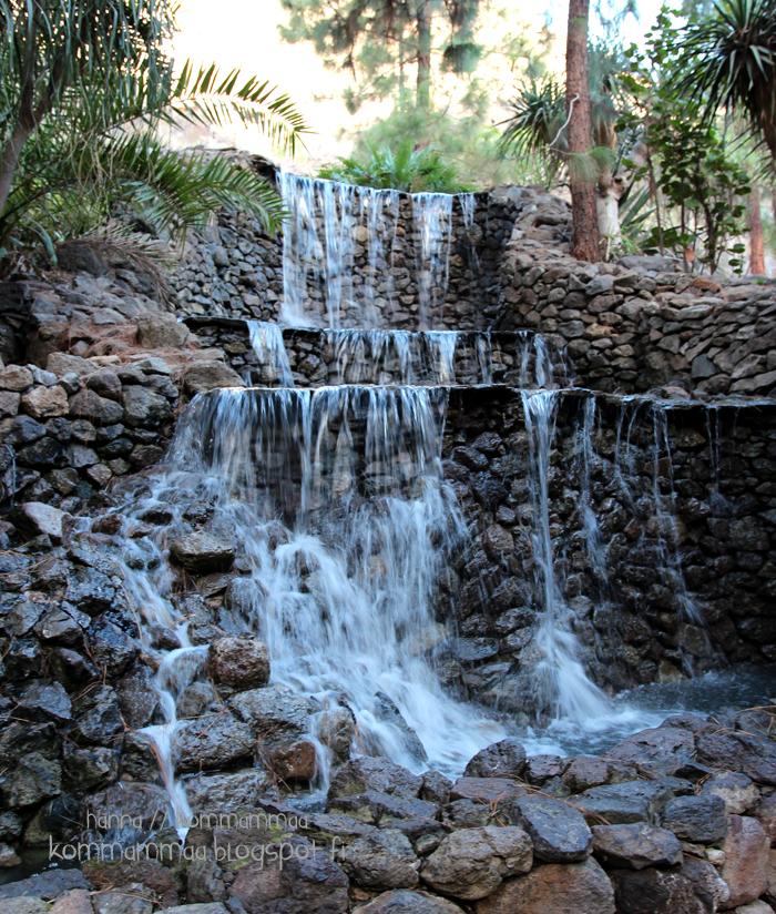 kanariansaaret bahia feliz kokemuksia lasten kanssa eläinpuisto palmitos park gran canaria