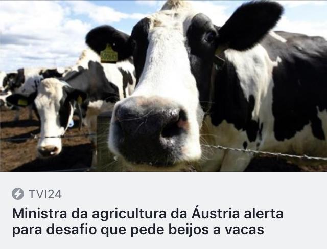 https://tvi24.iol.pt/acredite-se-quiser/suica/ministra-da-agricultura-da-austria-alerta-para-desafio-que-pede-beijos-a-vacas?fbclid=IwAR00O9kHPtWwdPNGtbAiNVhH6lcaSpM2eI3ITwKumFHtzC4aaJCT0t-K-GA