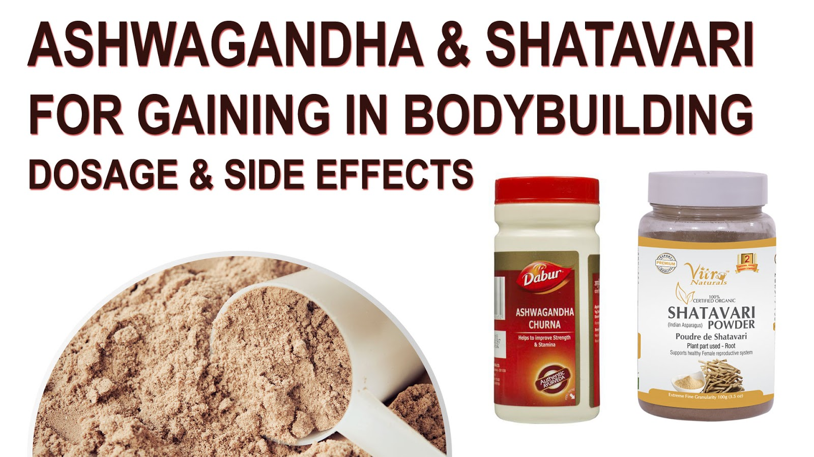 shatavari root uses