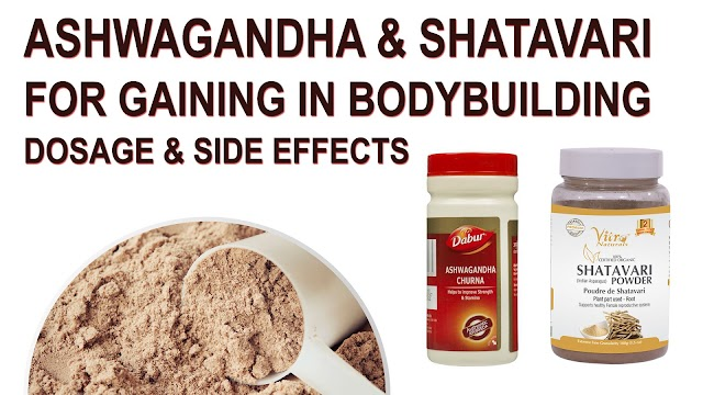Use of Ashwagandha and Shatavari(Asparagus) for gaining in bodybuilding - Dosage and Side Effects